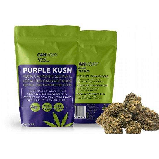 Purple Kush - 8% CBD Cannabidiol Cannabis Buds, 10 gram